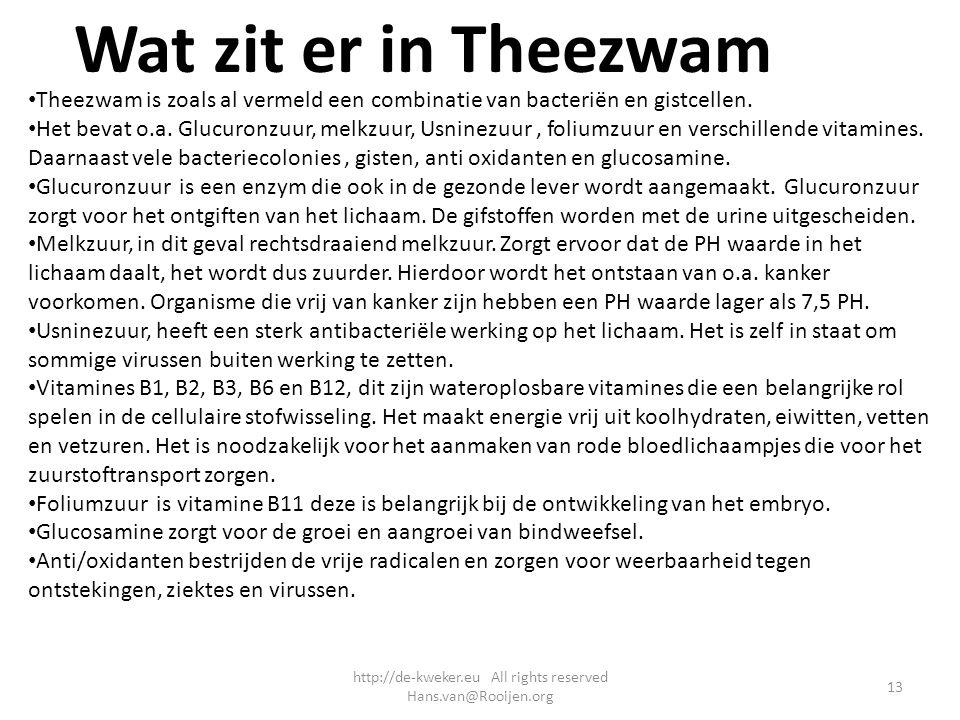 Wat zit er in Theezwam Theezwam is zoals al vermeld een combinatie van bacteriën en gistcellen. Het bevat o.a. Glucuronzuur, melkzuur, Usninezuur, fol
