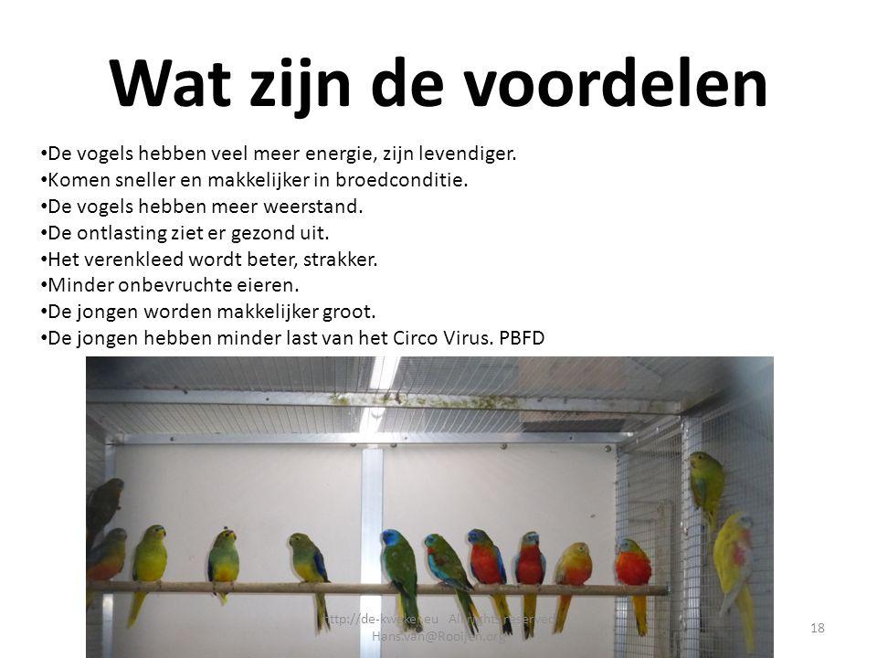 Wat zijn de voordelen De vogels hebben veel meer energie, zijn levendiger. Komen sneller en makkelijker in broedconditie. De vogels hebben meer weerst