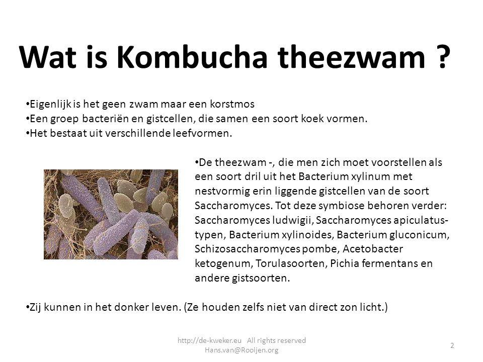 Wat is Kombucha theezwam ? Eigenlijk is het geen zwam maar een korstmos Een groep bacteriën en gistcellen, die samen een soort koek vormen. Het bestaa
