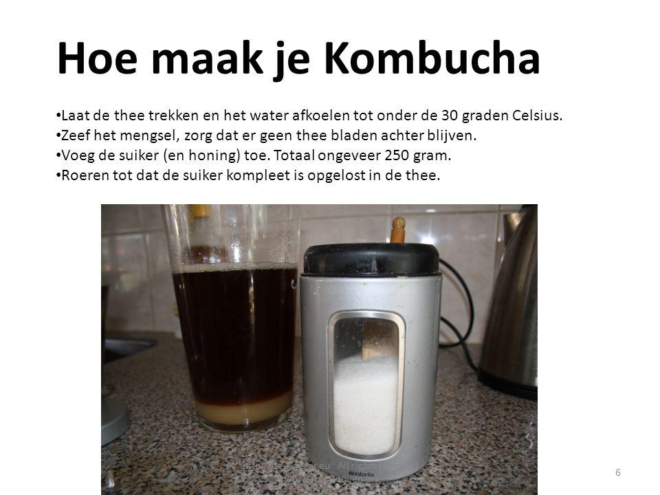 Hoe maak je Kombucha Laat de thee trekken en het water afkoelen tot onder de 30 graden Celsius. Zeef het mengsel, zorg dat er geen thee bladen achter