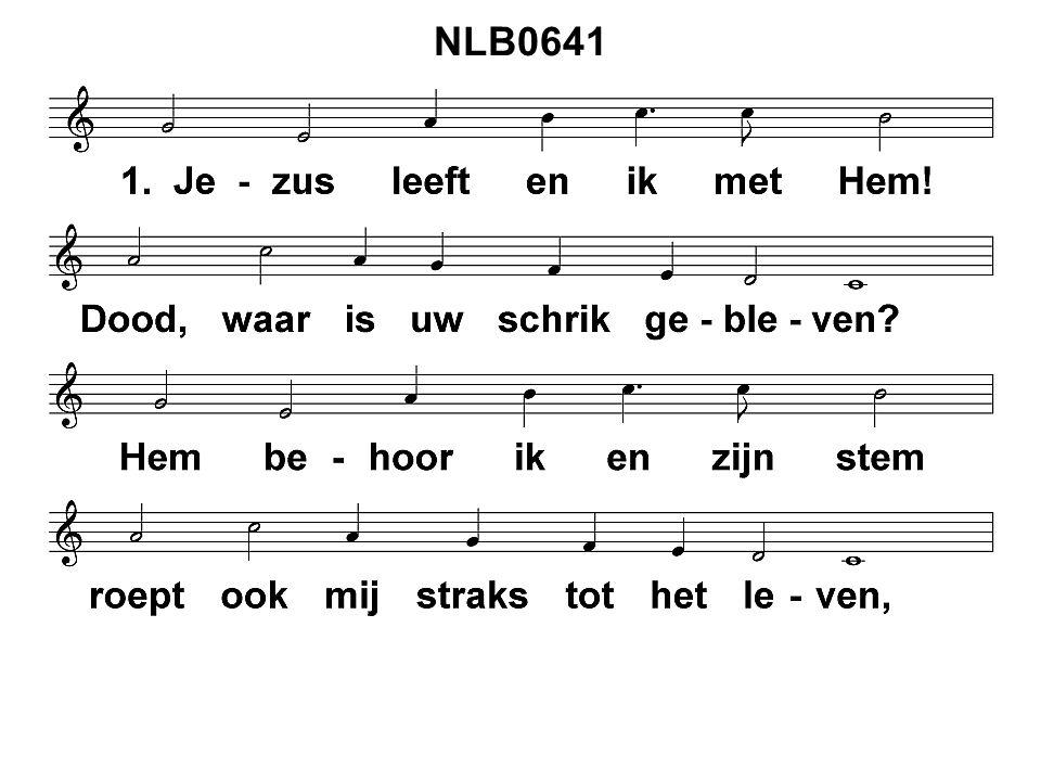 NLB0641