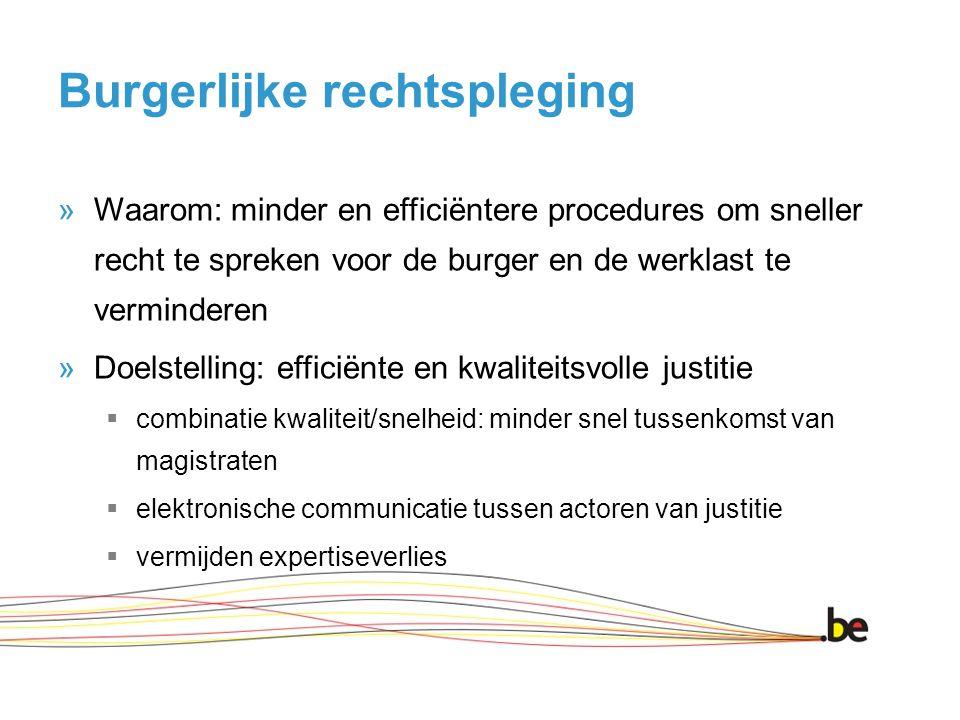 Burgerlijke rechtspleging »Waarom: minder en efficiëntere procedures om sneller recht te spreken voor de burger en de werklast te verminderen »Doelste