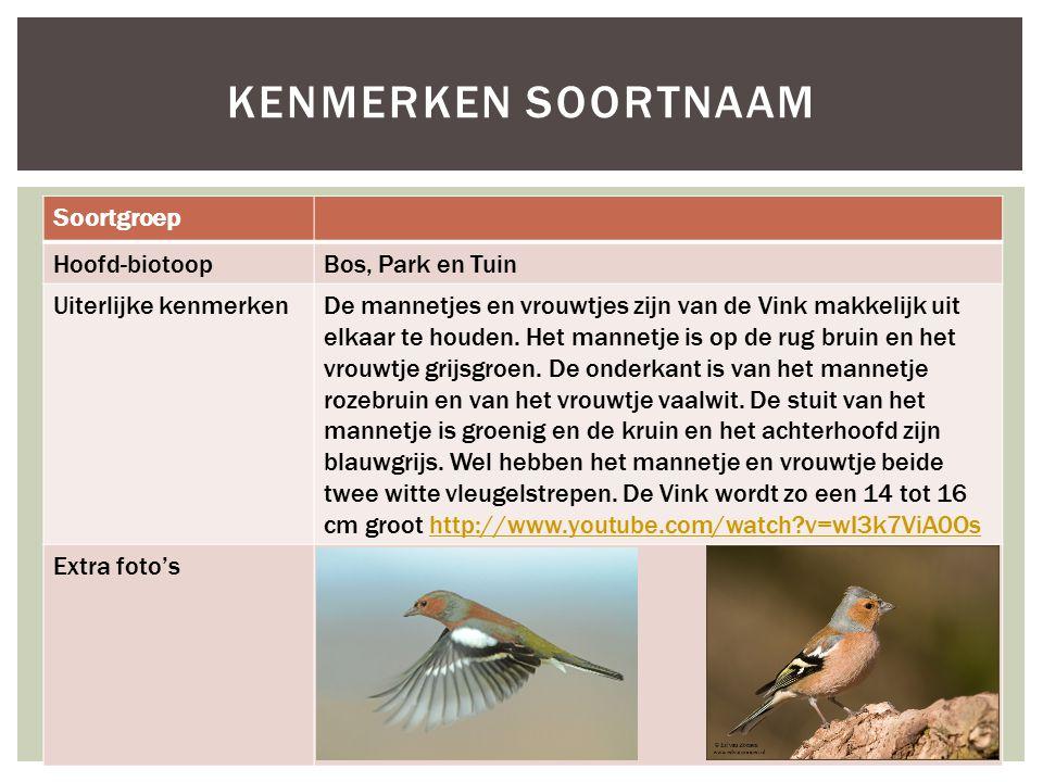 Soortgroep Hoofd-biotoopBos, Park en Tuin Uiterlijke kenmerkenDe mannetjes en vrouwtjes zijn van de Vink makkelijk uit elkaar te houden. Het mannetje