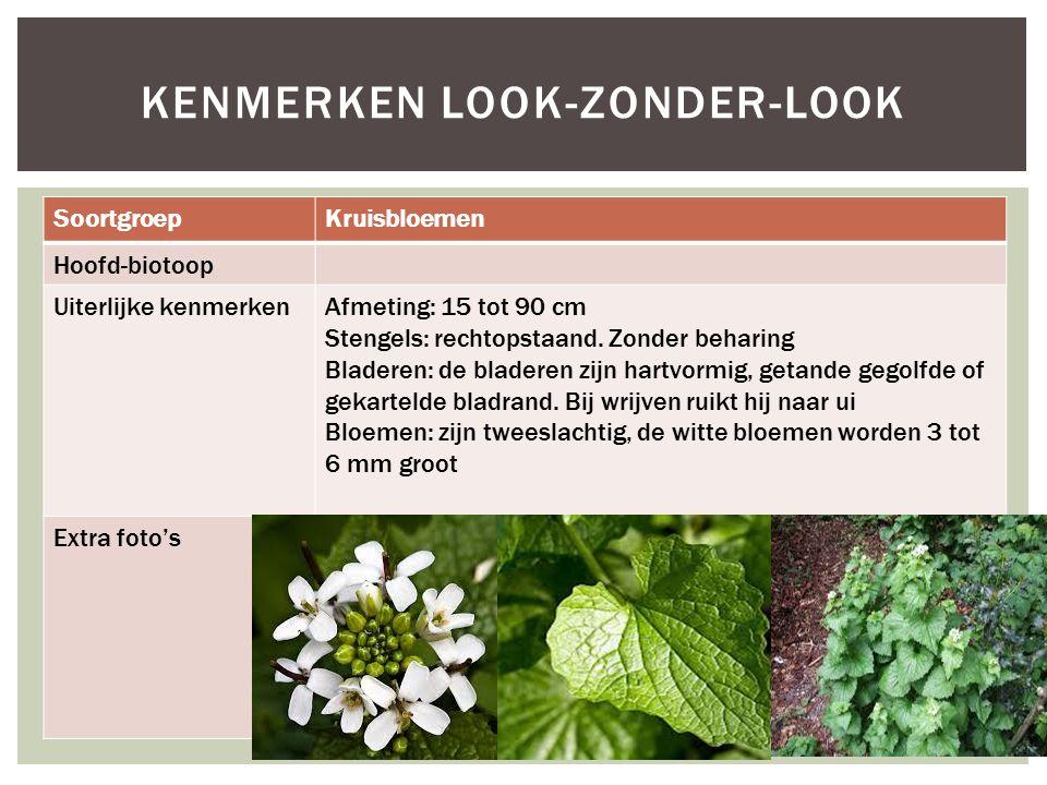 SoortgroepKruisbloemen Hoofd-biotoop Uiterlijke kenmerkenAfmeting: 15 tot 90 cm Stengels: rechtopstaand. Zonder beharing Bladeren: de bladeren zijn ha