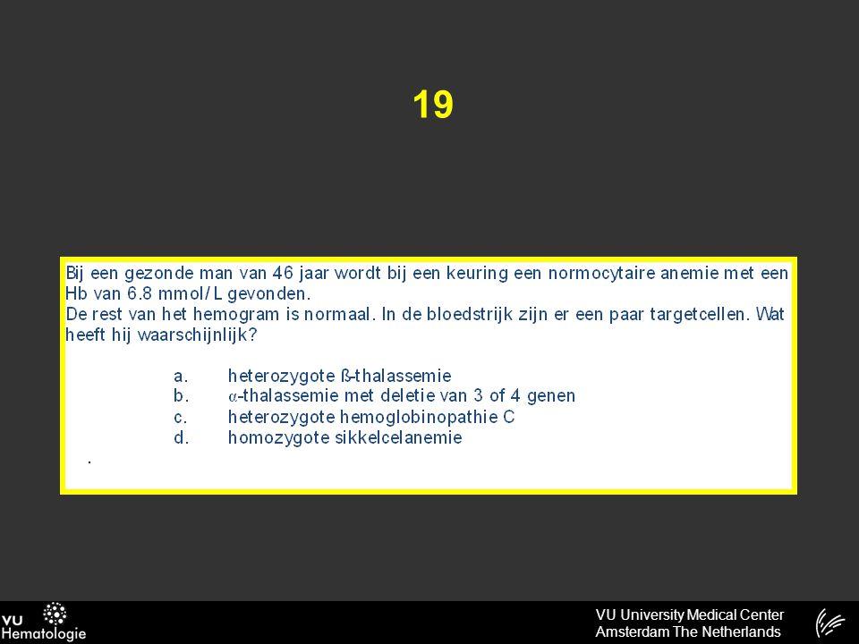 VU University Medical Center Amsterdam The Netherlands 19