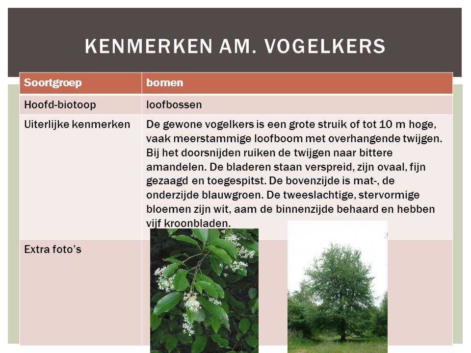 Soortgroepbomen Hoofd-biotooploofbossen Uiterlijke kenmerkenDe gewone vogelkers is een grote struik of tot 10 m hoge, vaak meerstammige loofboom met o