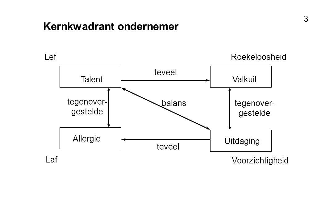 Voor resultaten met mensen 3 Kernkwadrant ondernemer TalentValkuil teveel Uitdaging Allergie tegenover- gestelde teveel tegenover- gestelde balans Lef