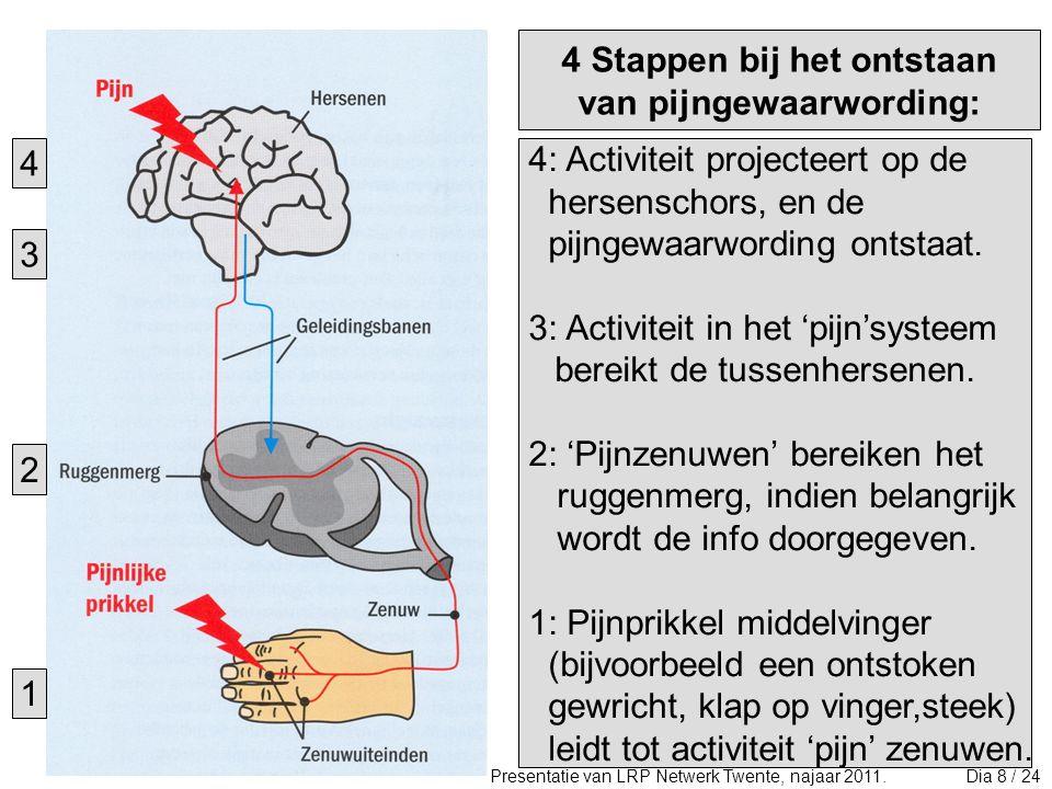 2.Zit pijn dus altijd in je brein.