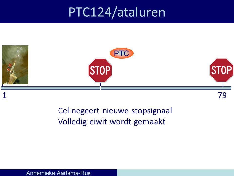 PTC124/ataluren Annemieke Aartsma-Rus 179 PTC Cel negeert nieuwe stopsignaal Volledig eiwit wordt gemaakt
