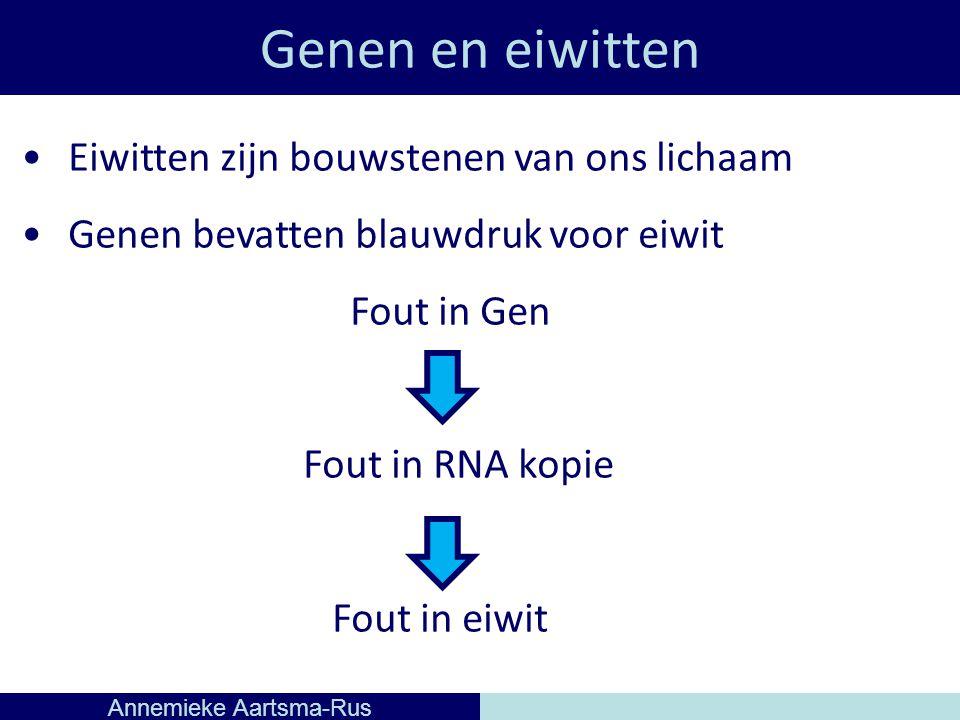 Genen en eiwitten Annemieke Aartsma-Rus Eiwitten zijn bouwstenen van ons lichaam Genen bevatten blauwdruk voor eiwit Fout in Gen Fout in RNA kopie Fout in eiwit