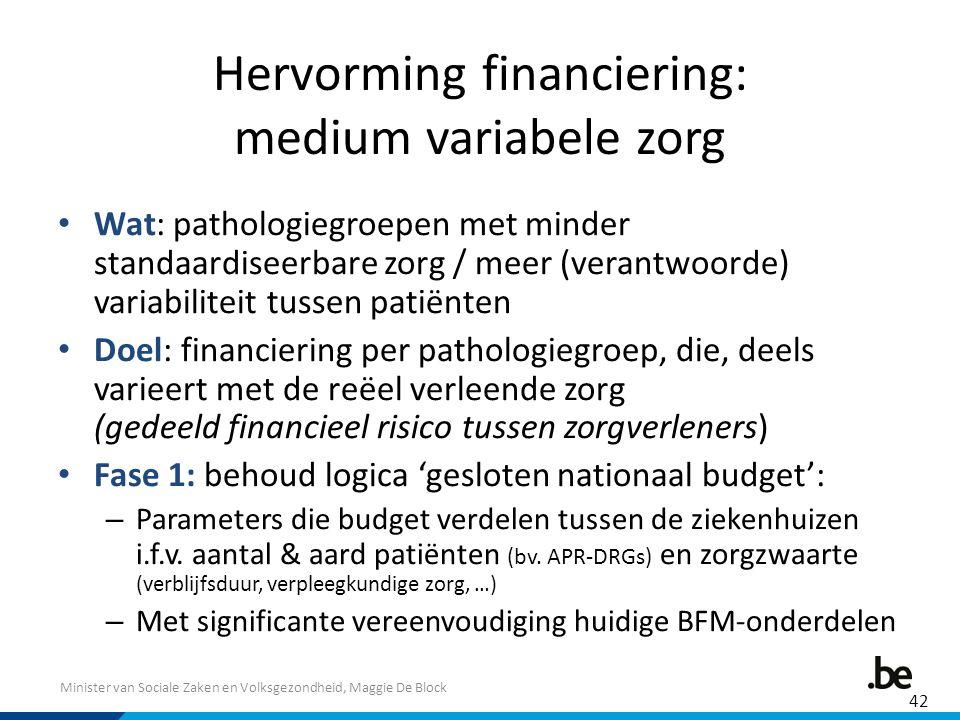 Minister van Sociale Zaken en Volksgezondheid, Maggie De Block Hervorming financiering: medium variabele zorg Wat: pathologiegroepen met minder standa