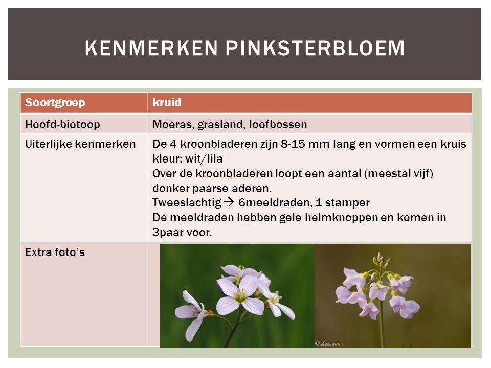 Soortgroepkruid Hoofd-biotoopMoeras, grasland, loofbossen Uiterlijke kenmerkenDe 4 kroonbladeren zijn 8-15 mm lang en vormen een kruis kleur: wit/lila