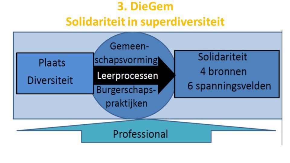 3. DieGem Solidariteit in superdiversiteit