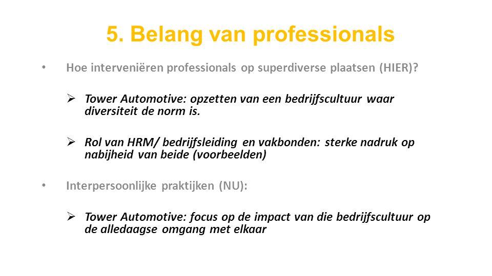 Hoe interveniëren professionals op superdiverse plaatsen (HIER).