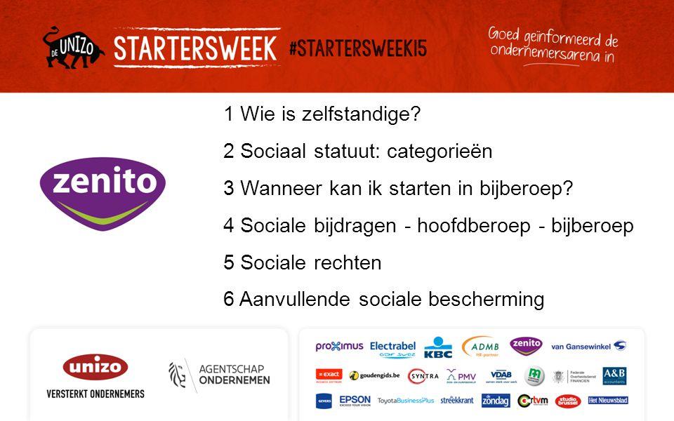 1 Wie is zelfstandige. 2 Sociaal statuut: categorieën 3 Wanneer kan ik starten in bijberoep.