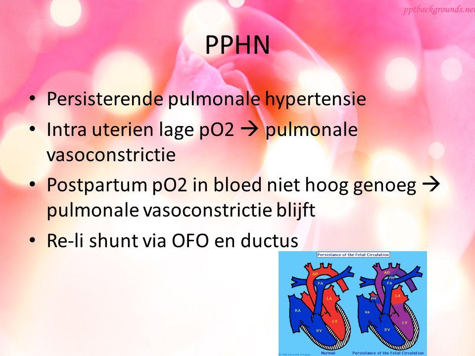 PPHN Persisterende pulmonale hypertensie Intra uterien lage pO2  pulmonale vasoconstrictie Postpartum pO2 in bloed niet hoog genoeg  pulmonale vasoc