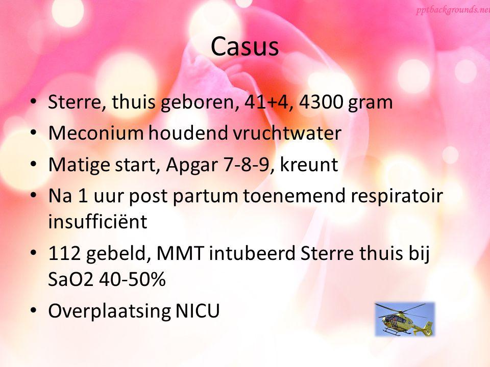 Casus Sterre, thuis geboren, 41+4, 4300 gram Meconium houdend vruchtwater Matige start, Apgar 7-8-9, kreunt Na 1 uur post partum toenemend respiratoir