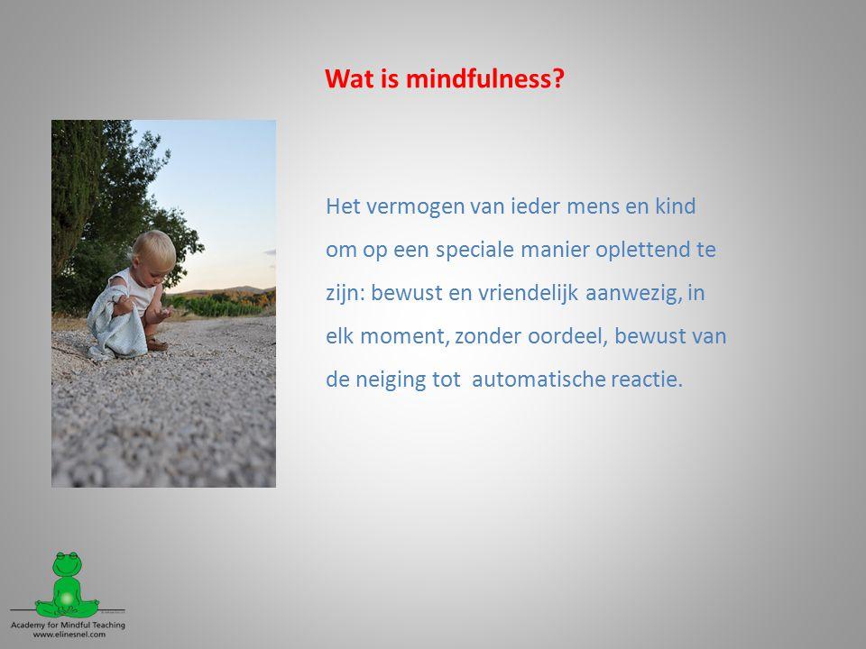 Wat is mindfulness.