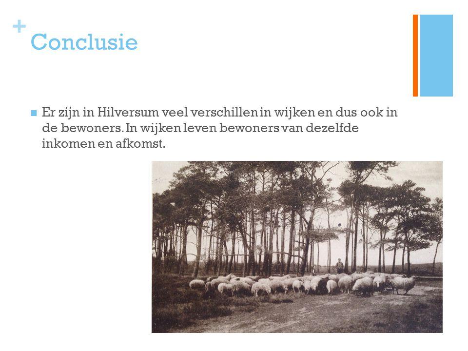 + Conclusie Er zijn in Hilversum veel verschillen in wijken en dus ook in de bewoners. In wijken leven bewoners van dezelfde inkomen en afkomst.