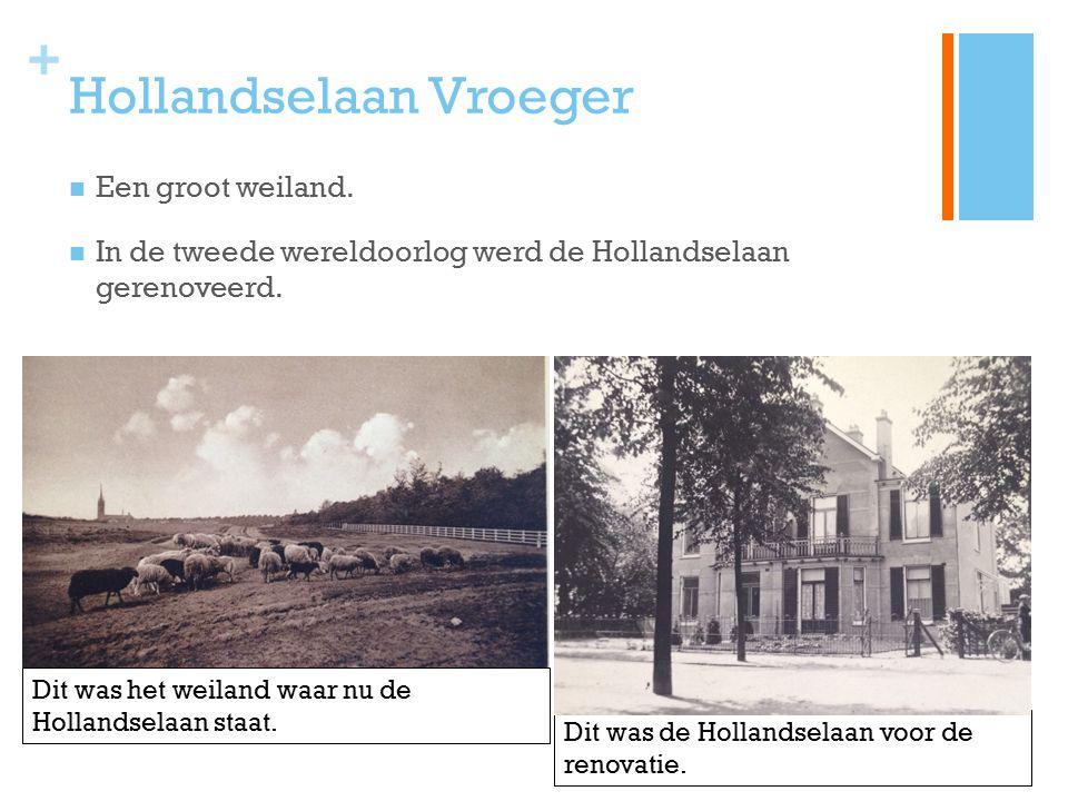 + Hollandselaan Vroeger Een groot weiland. In de tweede wereldoorlog werd de Hollandselaan gerenoveerd. Dit was de Hollandselaan voor de renovatie. Di