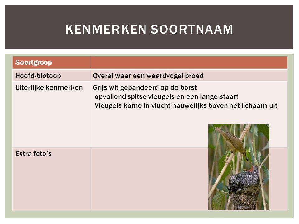 Soortgroep Hoofd-biotoopOveral waar een waardvogel broed Uiterlijke kenmerkenGrijs-wit gebandeerd op de borst opvallend spitse vleugels en een lange s