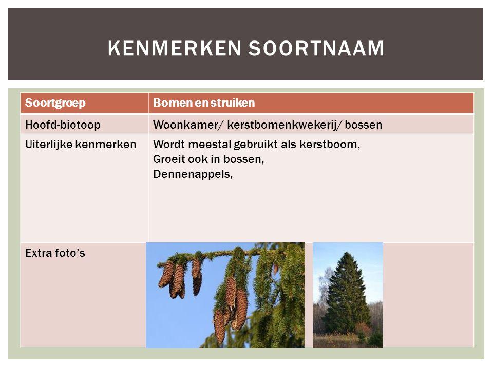 SoortgroepBomen en struiken Hoofd-biotoopWoonkamer/ kerstbomenkwekerij/ bossen Uiterlijke kenmerkenWordt meestal gebruikt als kerstboom, Groeit ook in