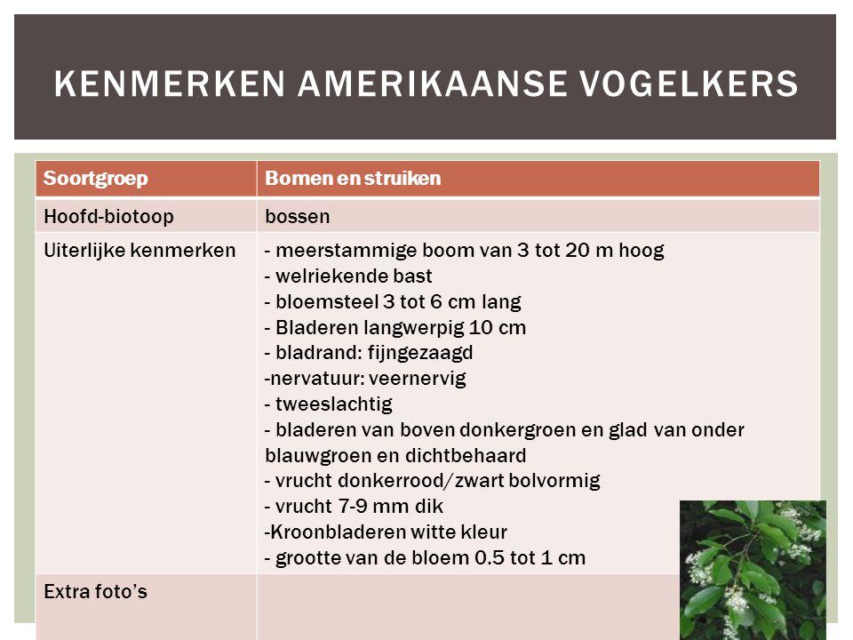 SoortgroepBomen en struiken Hoofd-biotoopbossen Uiterlijke kenmerken- meerstammige boom van 3 tot 20 m hoog - welriekende bast - bloemsteel 3 tot 6 cm