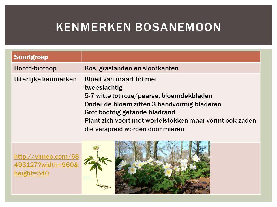 Soortgroep Hoofd-biotoopBos, graslanden en slootkanten Uiterlijke kenmerkenBloeit van maart tot mei tweeslachtig 5-7 witte tot roze/paarse, bloemdekbl