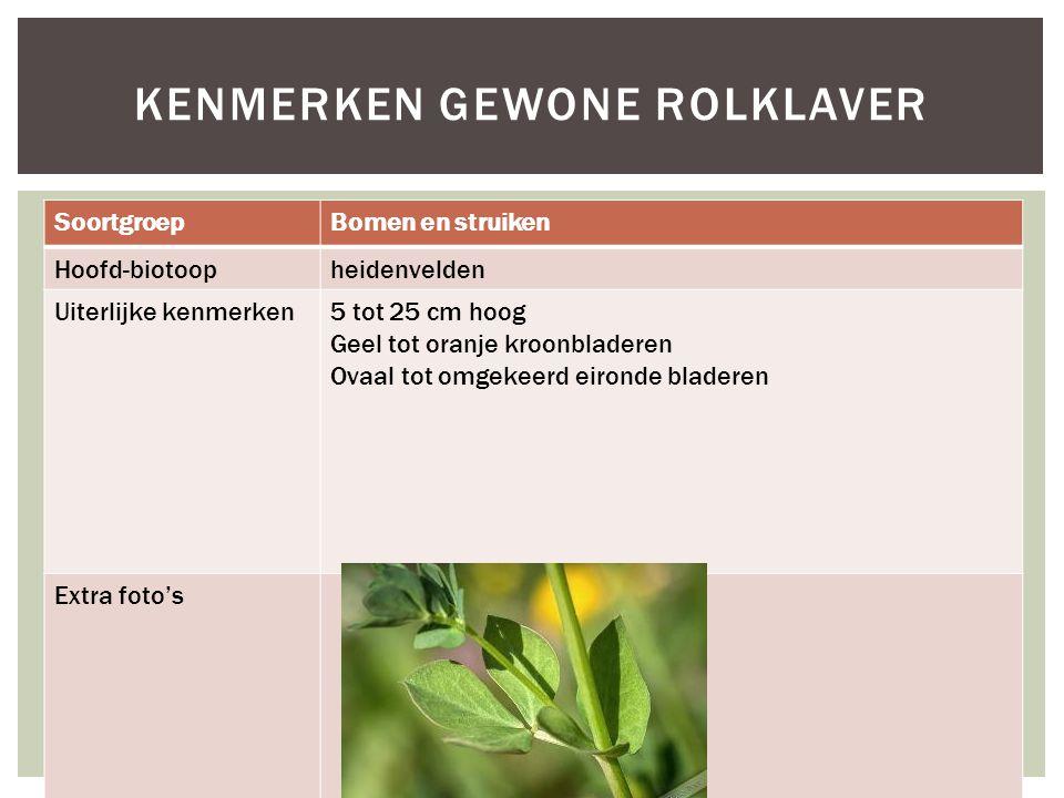SoortgroepBomen en struiken Hoofd-biotoopheidenvelden Uiterlijke kenmerken5 tot 25 cm hoog Geel tot oranje kroonbladeren Ovaal tot omgekeerd eironde bladeren Extra foto's KENMERKEN GEWONE ROLKLAVER