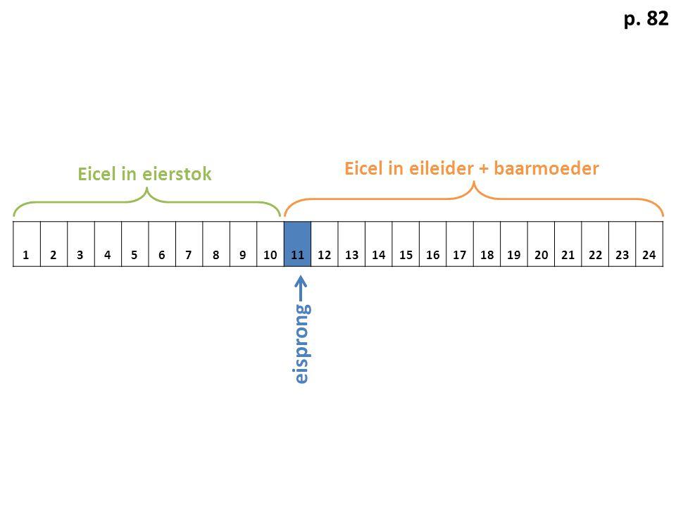 123456789101112131415161718192021222324 p. 82 Eicel in eierstok Eicel in eileider + baarmoeder eisprong