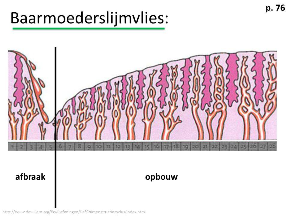 Baarmoederslijmvlies: http://www.dewillem.org/fss/Oefeningen/De%20menstruatiecyclus/index.html afbraakopbouw p. 76