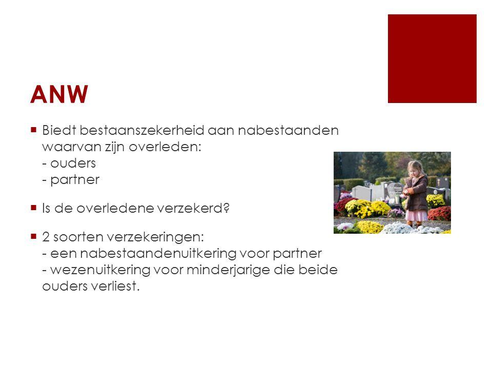 ANW  Biedt bestaanszekerheid aan nabestaanden waarvan zijn overleden: - ouders - partner  Is de overledene verzekerd.