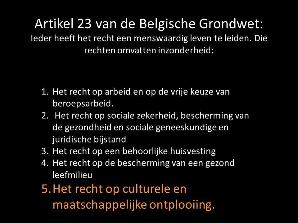 Artikel 23 van de Belgische Grondwet: Ieder heeft het recht een menswaardig leven te leiden.