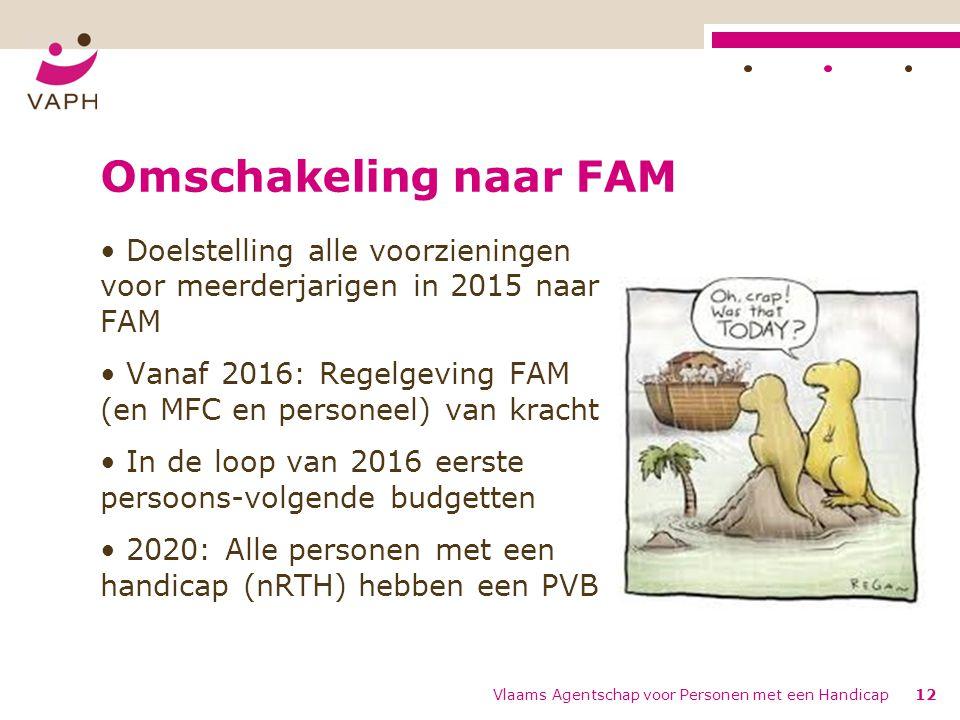 Omschakeling naar FAM Doelstelling alle voorzieningen voor meerderjarigen in 2015 naar FAM Vanaf 2016: Regelgeving FAM (en MFC en personeel) van kracht In de loop van 2016 eerste persoons-volgende budgetten 2020: Alle personen met een handicap (nRTH) hebben een PVB Vlaams Agentschap voor Personen met een Handicap12