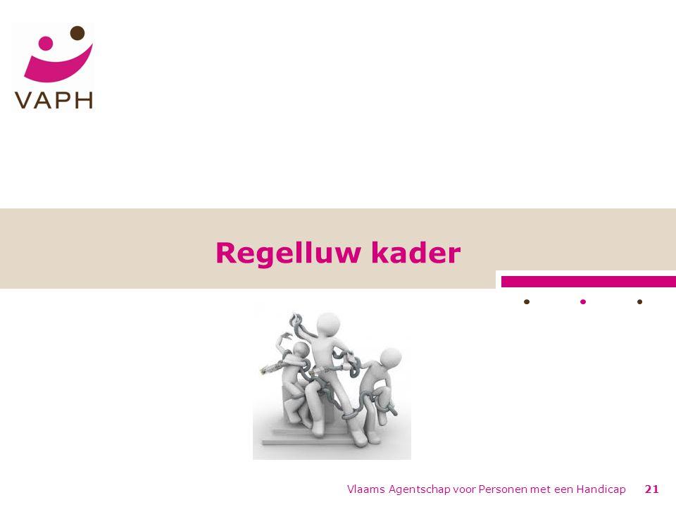 Vlaams Agentschap voor Personen met een Handicap21 Regelluw kader