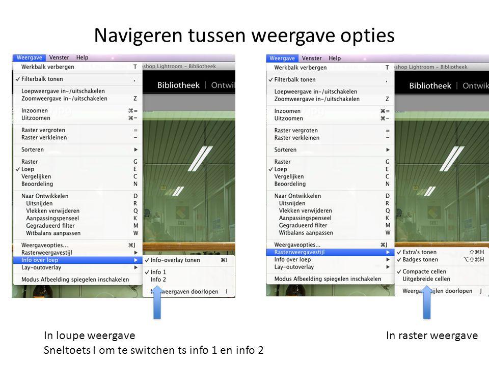 Navigeren tussen weergave opties In loupe weergave Sneltoets I om te switchen ts info 1 en info 2 In raster weergave