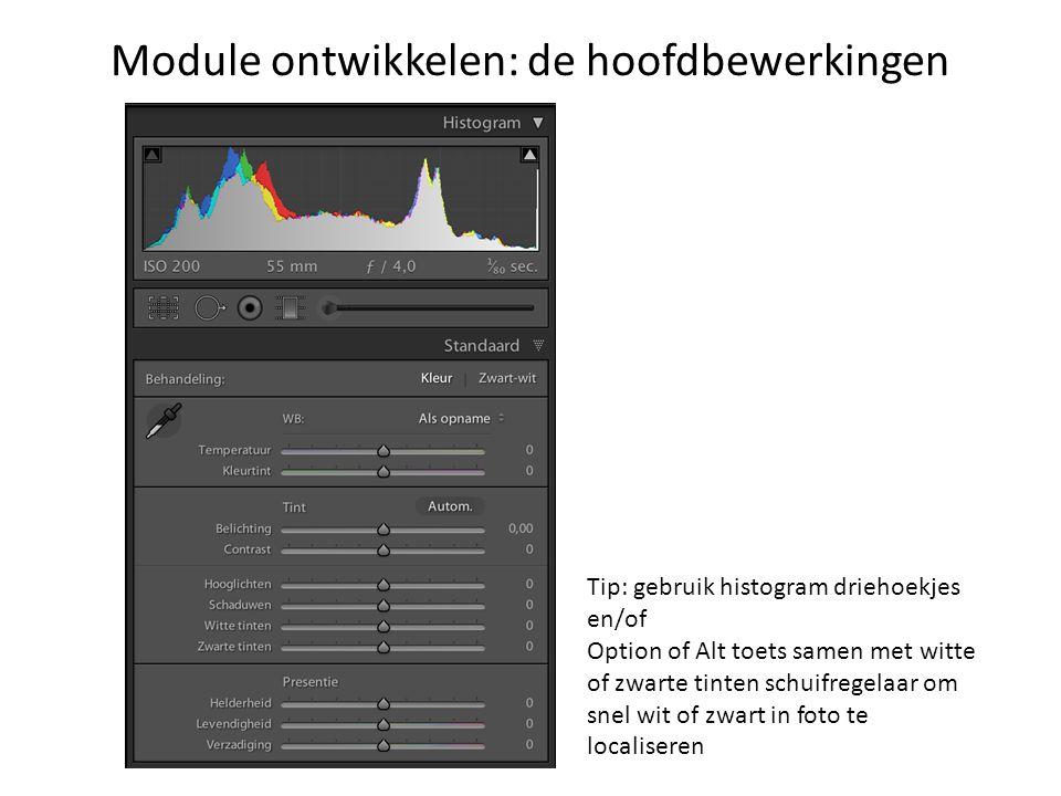Module ontwikkelen: de hoofdbewerkingen Tip: gebruik histogram driehoekjes en/of Option of Alt toets samen met witte of zwarte tinten schuifregelaar om snel wit of zwart in foto te localiseren