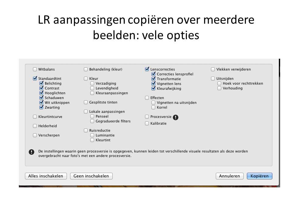 LR aanpassingen copiëren over meerdere beelden: vele opties