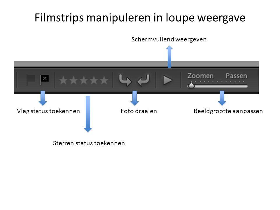 Filmstrips manipuleren in loupe weergave Vlag status toekennen Sterren status toekennen Foto draaienBeeldgrootte aanpassen Schermvullend weergeven
