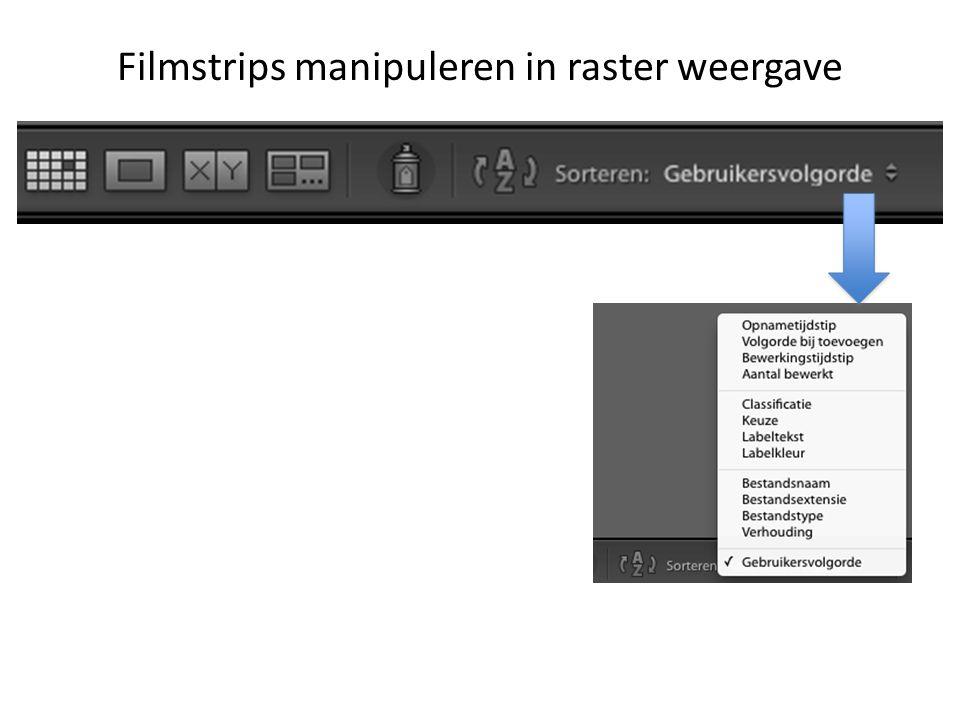 Filmstrips manipuleren in raster weergave