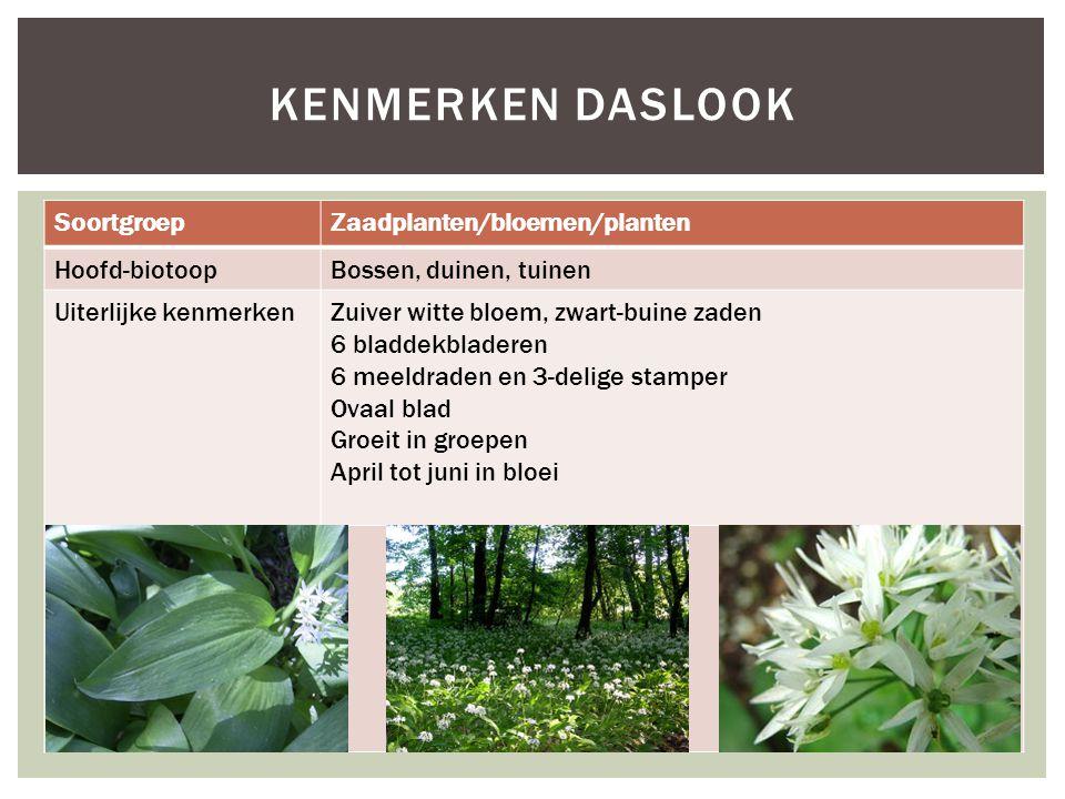 SoortgroepZaadplanten/bloemen/planten Hoofd-biotoopBossen, duinen, tuinen Uiterlijke kenmerkenZuiver witte bloem, zwart-buine zaden 6 bladdekbladeren