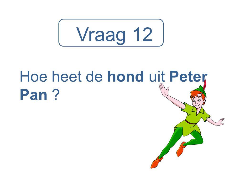 Vraag 12 Hoe heet de hond uit Peter Pan ?