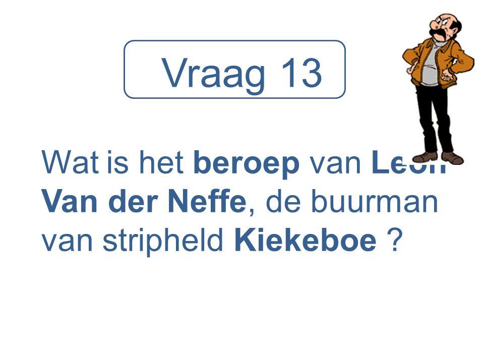 Vraag 13 Wat is het beroep van Leon Van der Neffe, de buurman van stripheld Kiekeboe ?