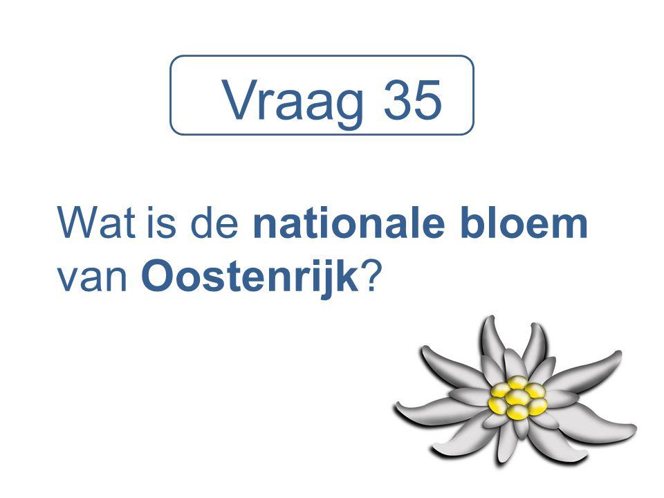 Vraag 35 Wat is de nationale bloem van Oostenrijk?