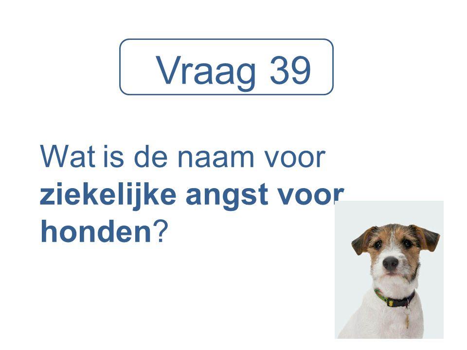 Vraag 39 Wat is de naam voor ziekelijke angst voor honden?