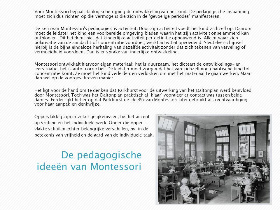 Voor Montessori bepaalt biologische rijping de ontwikkeling van het kind. De pedagogische inspanning moet zich dus richten op die vermogens die zich i