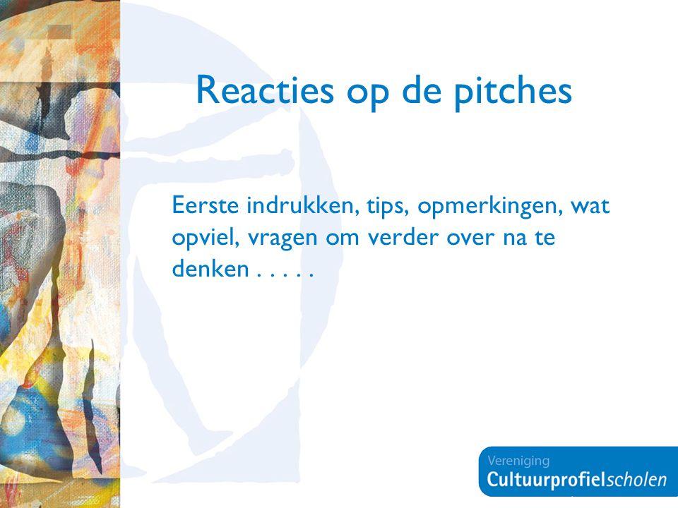 Reacties op de pitches Eerste indrukken, tips, opmerkingen, wat opviel, vragen om verder over na te denken.....
