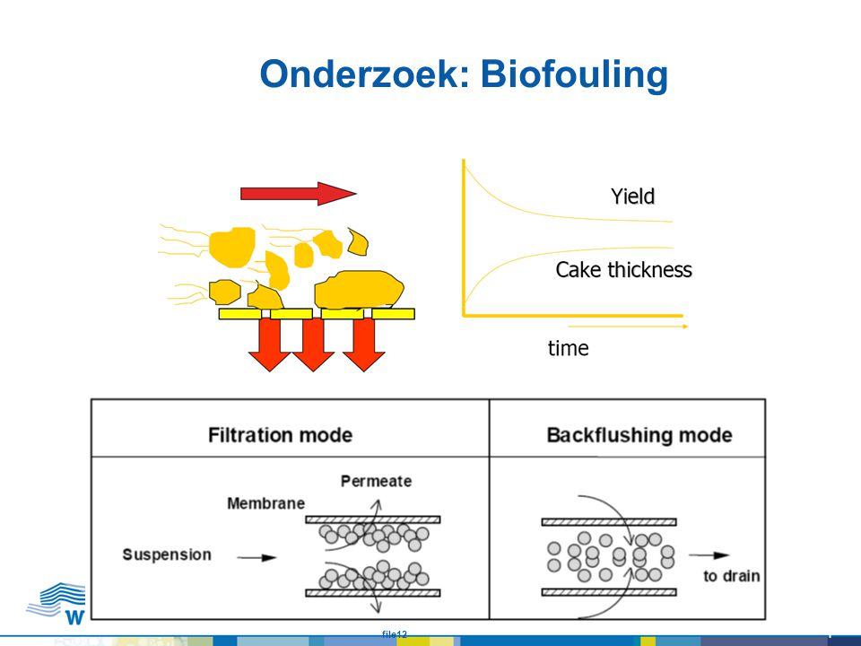 Onderzoek: Biofouling file121