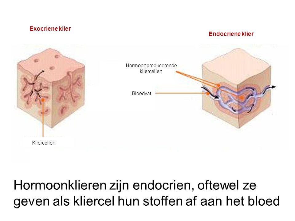 Exocriene klier Endocriene klier Kliercellen Bloedvat Hormoonproducerende kliercellen Hormoonklieren zijn endocrien, oftewel ze geven als kliercel hun