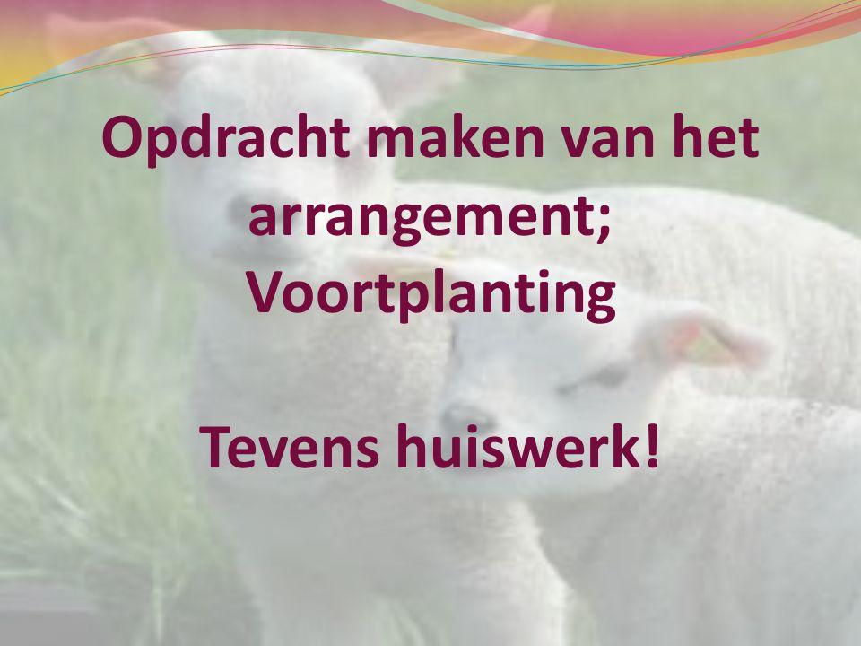 Opdracht maken van het arrangement; Voortplanting Tevens huiswerk!